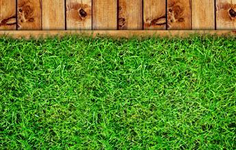 Lawn Treatment Lawn Fertilization Waxahachie Tx